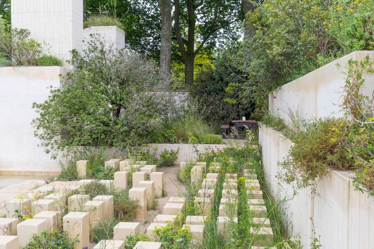 The M&G Garden. Designed by: James Basson. Sponsored by: M&G Investments. RHS Chelsea Flower Show 2017.