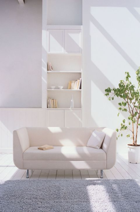Sunlight On Sofa In A Room With White Walls