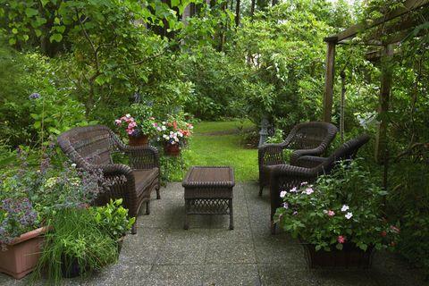 Backyard patio and lush garden with rattan furniture