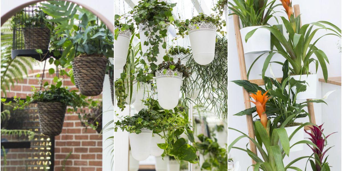 5 ways to make the most of indoor gardening