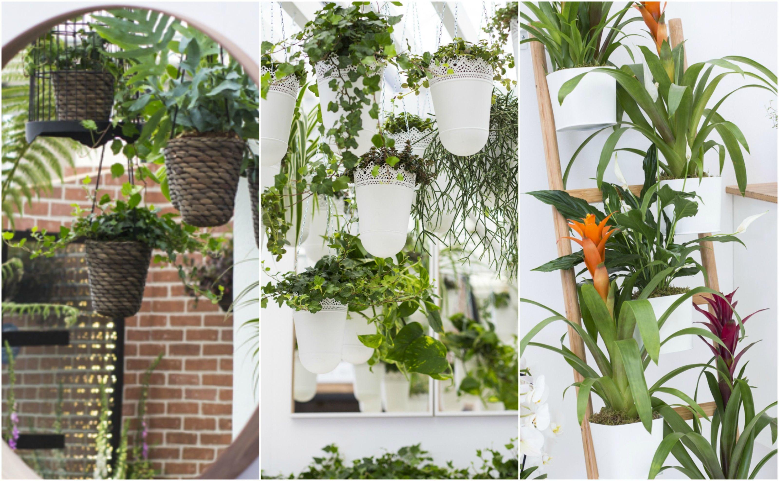 Indoor Gardening   Ikea