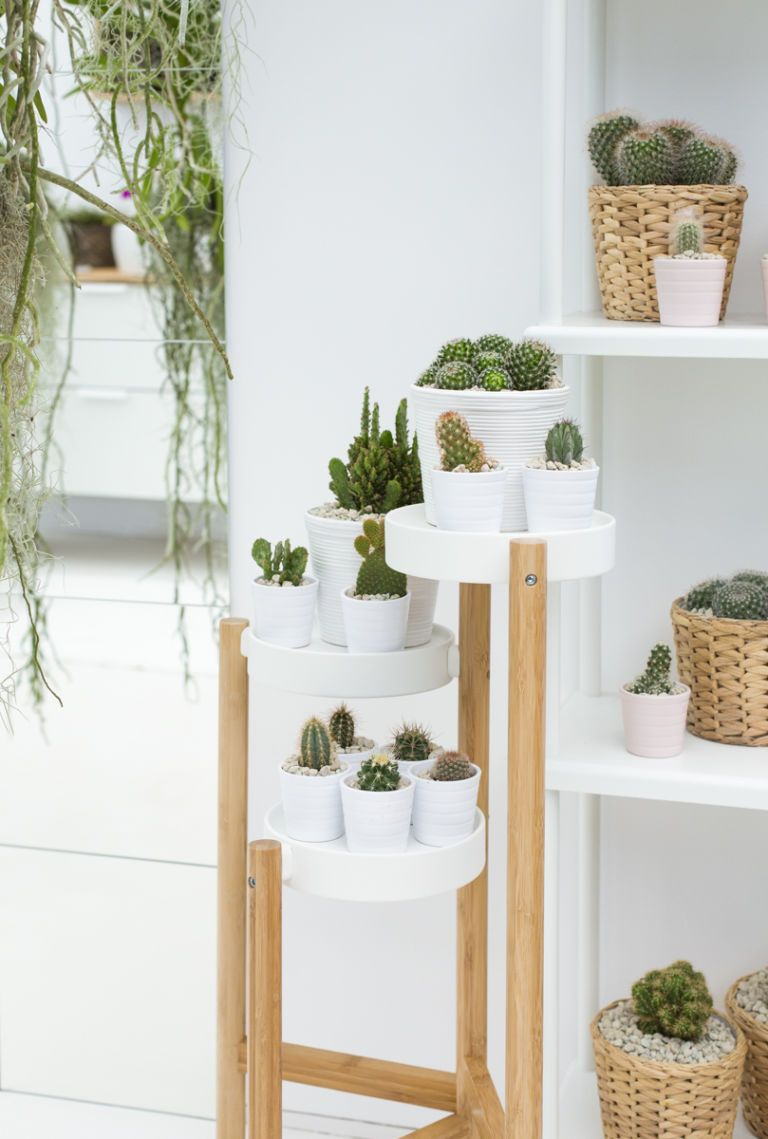 Exceptionnel IKEA And Indoor Garden Design, Co Created A Display At The RHS Chelsea  Flower
