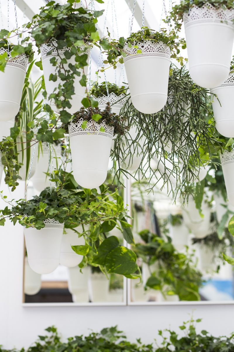 IKEA And Indoor Garden Design, Co Created A Display At The RHS Chelsea  Flower