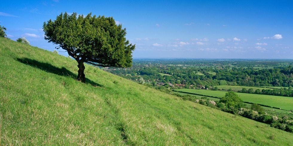 Jane Austen's English Countryside tour