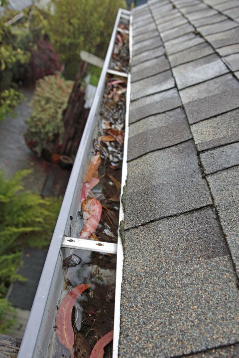 <p>After emptying or flipping basins in your garden, don't forget to check the roof. Backed-up gutters provide mosquitoes with another easy watering hole.&nbsp;</p>