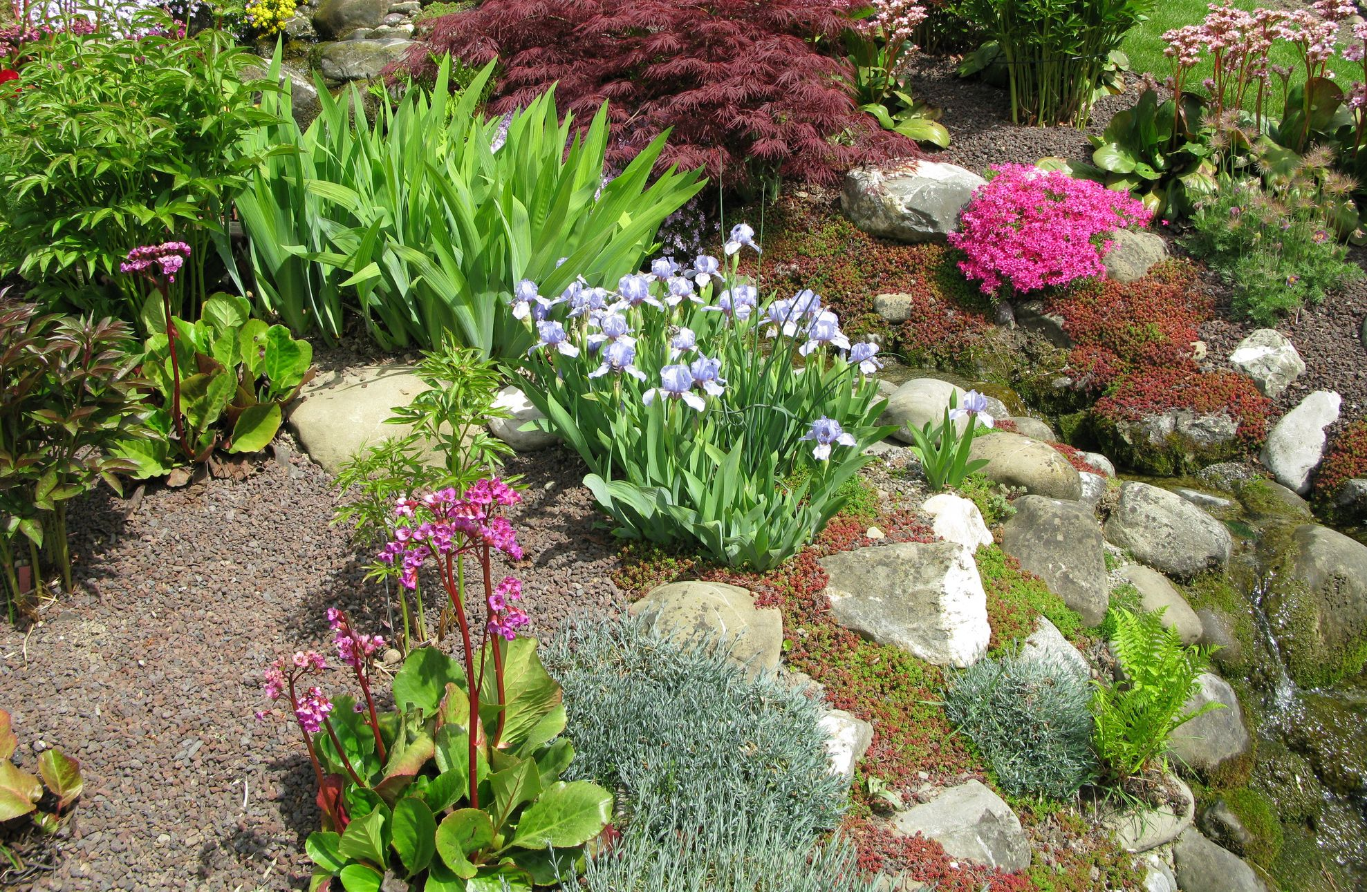 How To Create A Rock Garden