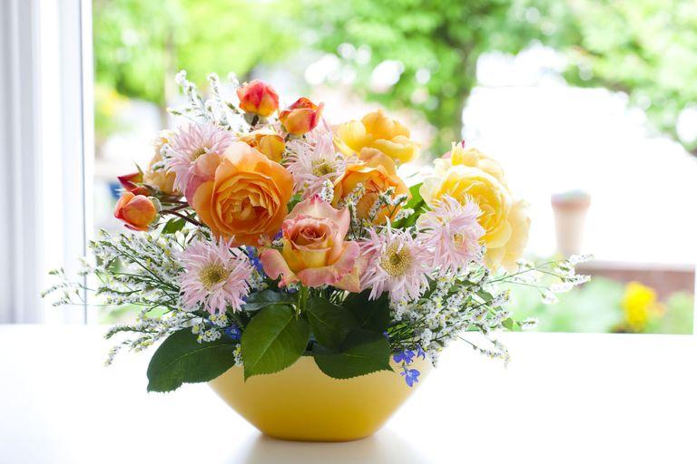 Head florist at Morrisons Flowerworld reveals the secret to perfect ...