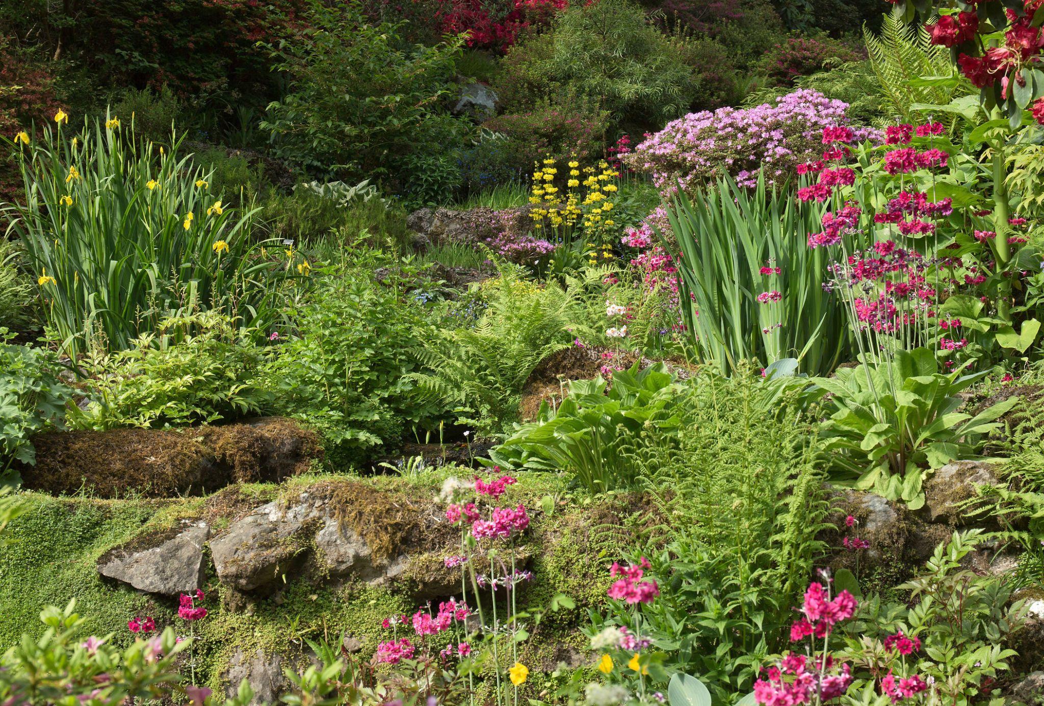 Woodland Rock Garden