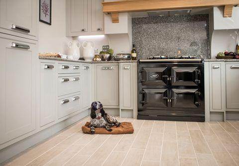 Pet-friendly home: Alexander James Interior Design