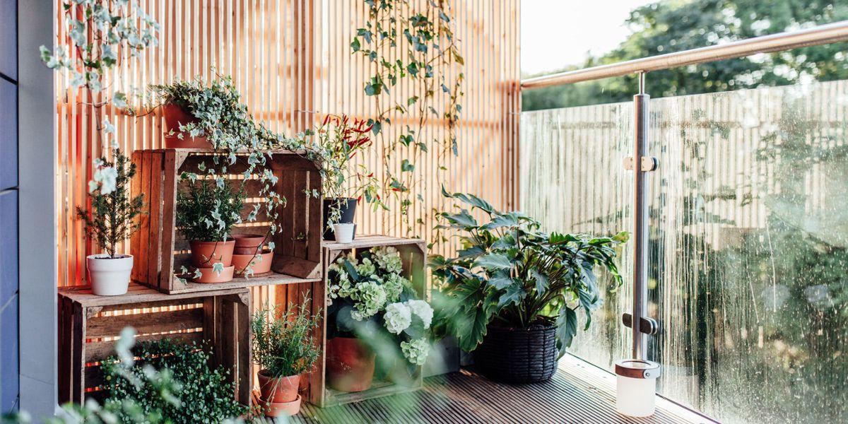 3 Easy Balcony Garden Ideas Small Garden Ideas