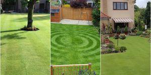 Britain's Best Lawn shortlist 2017