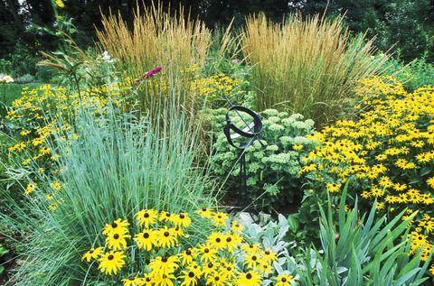 Best ornamental grasses for your garden ornamental grass in flower bed mightylinksfo