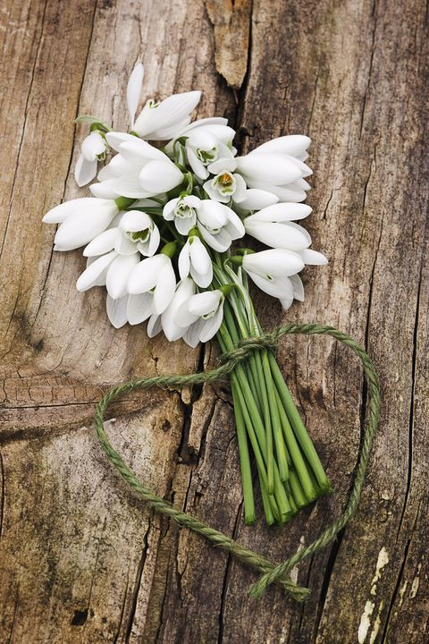 <p>Snow-white holiday blooms may seem like the perfect wintery gift for your host or hostess, but beware of cultural norms that could affect how they're received. 'Make sure your gift doesn't contain any cultural symbolism for the host,'&nbsp;says Blum. 'For example, white flowers in Asian cultures are considered funeral flowers.'</p>