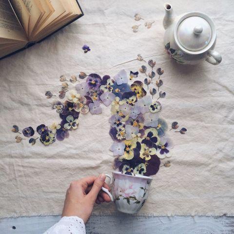 Serveware, Teapot, Purple, Lavender, Flowerpot, Stovetop kettle, Creative arts, Dishware, Cut flowers, Porcelain,