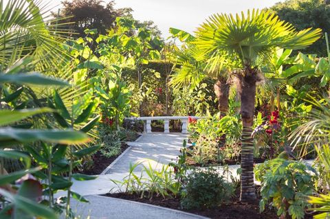 RHS Garden Wisley - exotic garden