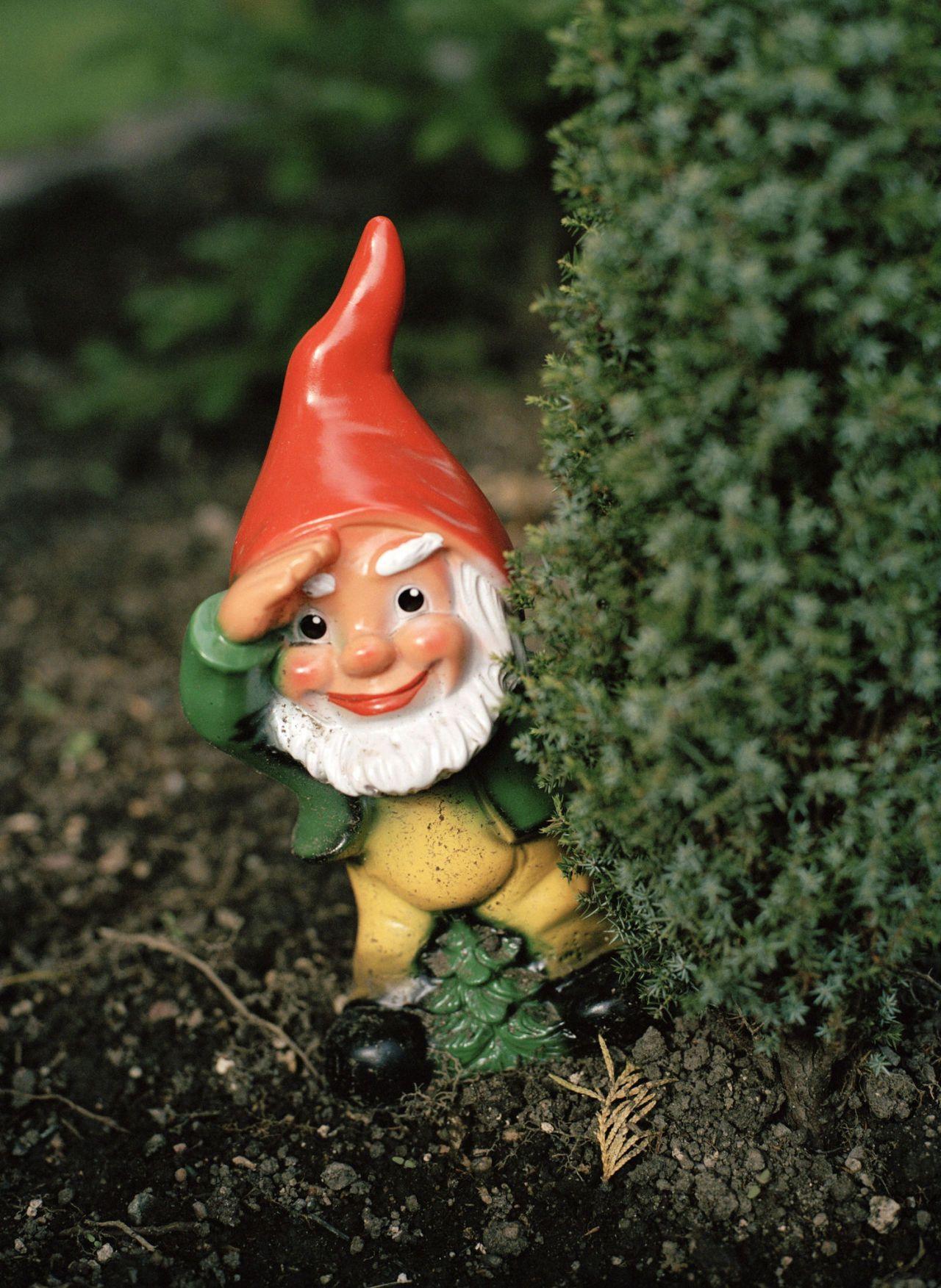 A Garden Gnome Close Up