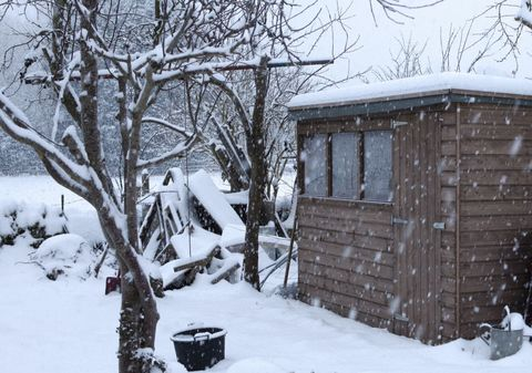 Garden shed in snow