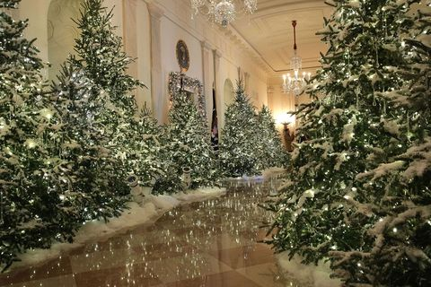 "<p>Over 150 volunteers spent 1,600 hours decorating <a href=""http://www.housebeautiful.co.uk/lifestyle/news/g180/inside-the-white-house-at-christmas/"" target=""_blank"" data-tracking-id=""recirc-text-link"">the White House</a> this past long weekend, using more than 18,000 lights. Some of those strands twinkle here in Cross Hall. </p>"