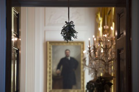 <p>A sprig of mistletoe hangs near John Singer Sargent's official portrait of Theodore Roosevelt in the East Room. </p>