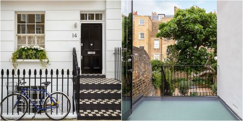 14 Halsey Street SW3 - Chelsea townhouse - fig tree - Russell Simpson