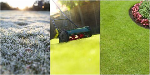 Lawn care - winter to summer