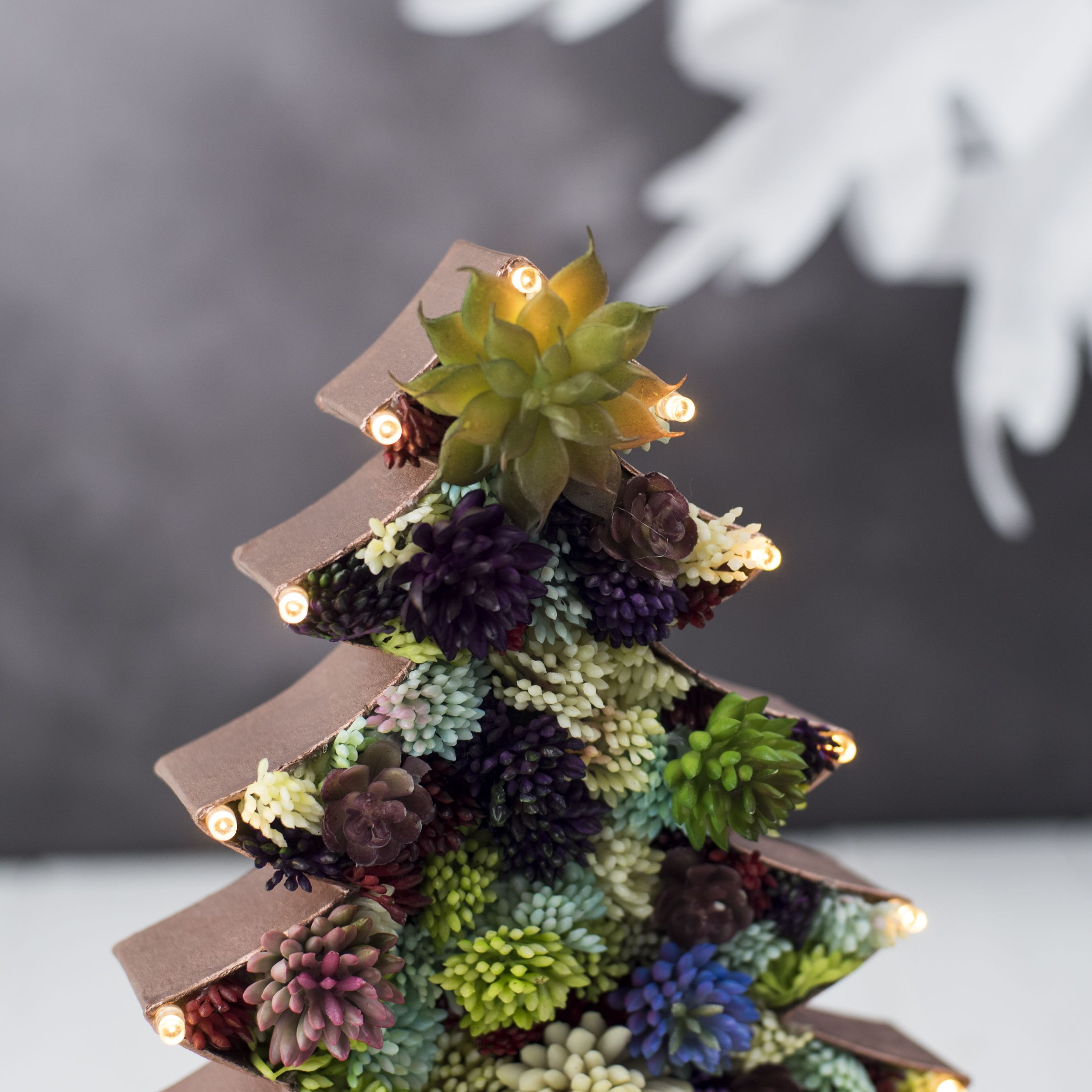 Succulent Plant Christmas Trees Is The New Alternative Christmas Tree