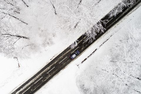 Road through wintery forest