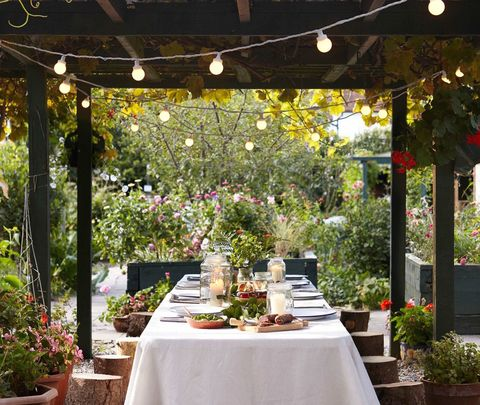 Alfresco Festoon Light Canopy