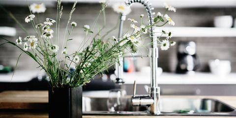 Kitchen Counter in summer