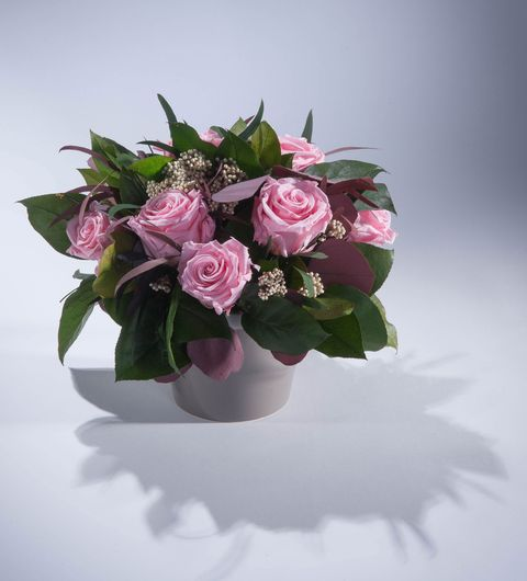 Real Flowers That Last For One Year - Fresh Flower Arrangement