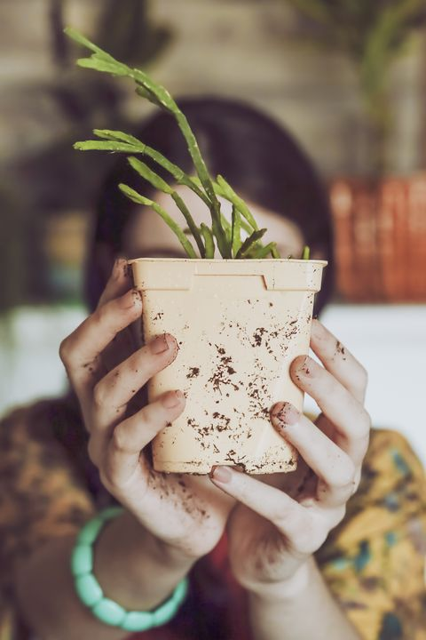 Young woman holding freshly potted cactus