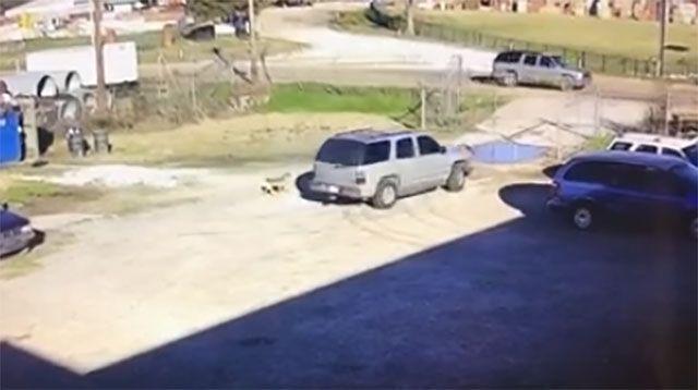https://www.wapt.com/article/man-dies-after-rankin-county-shooting ...