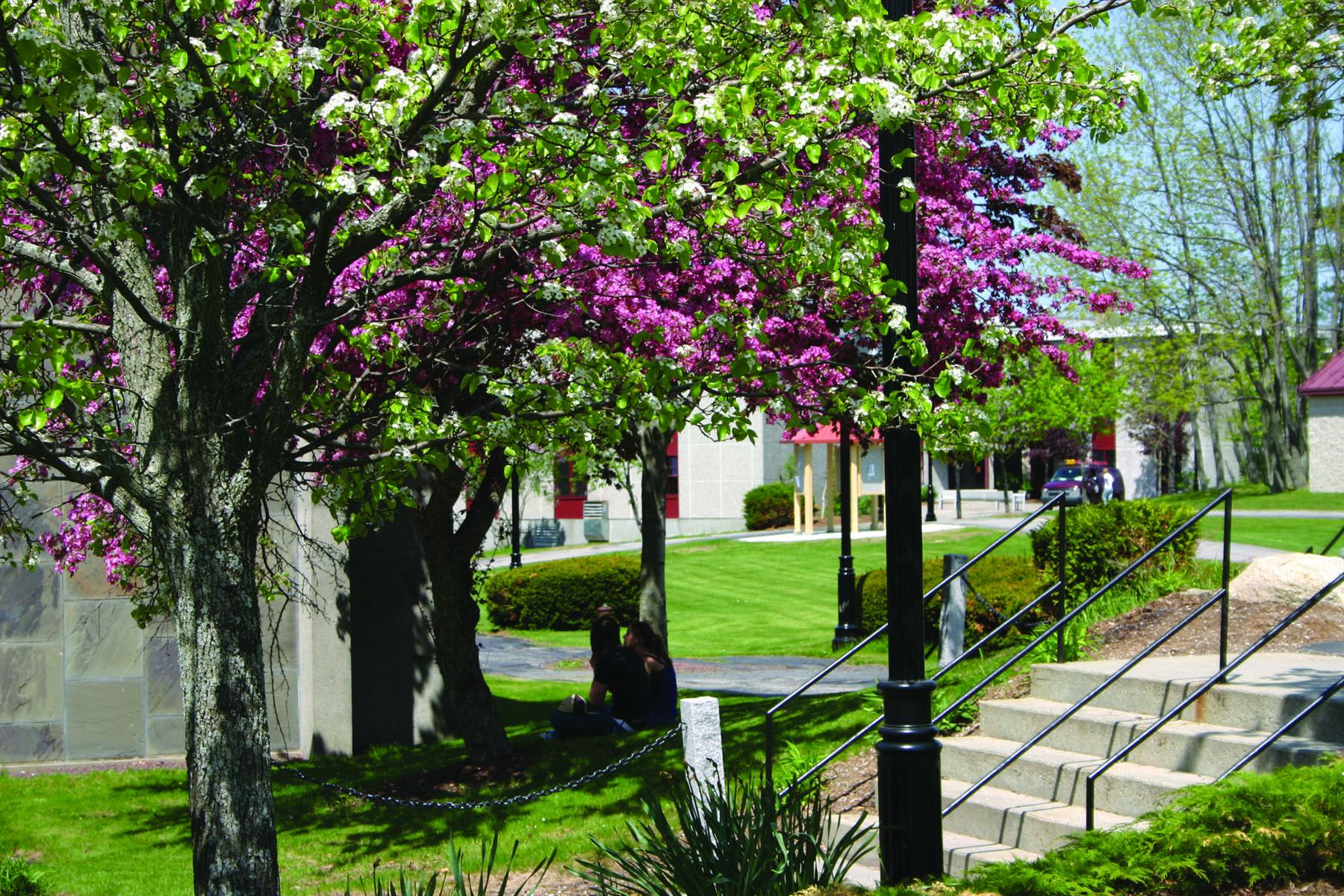 fpu-campus-photo-1526576320.jpg