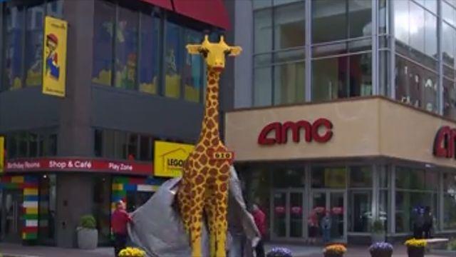legoland center renames giraffe after family s late son