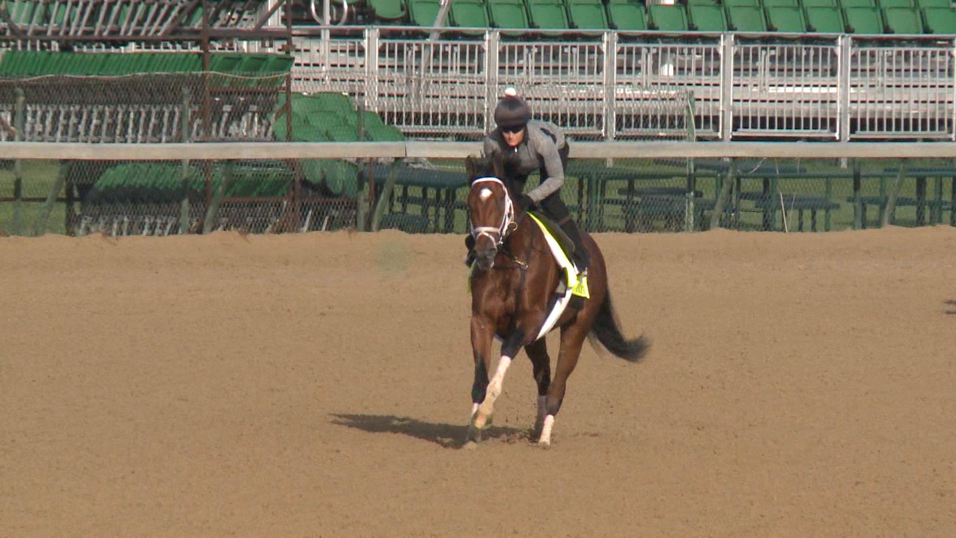 patch derby horse 1493387815 jpg
