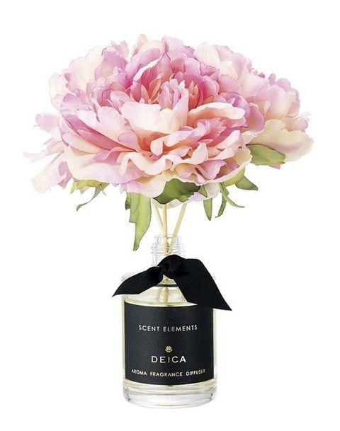Petal, Flower, Pink, Flowering plant, Cut flowers, Botany, Flower Arranging, Floristry, Lavender, Bouquet,