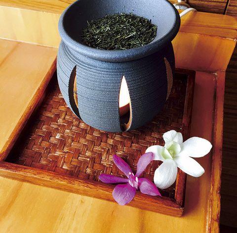 Mortar and pestle, Flowerpot, Flower, Plant, Houseplant, Tableware, Herb,