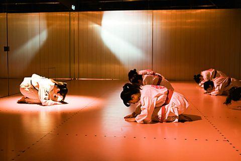 Performance art, Brazilian jiu-jitsu, Jujutsu, Judo, Performing arts,