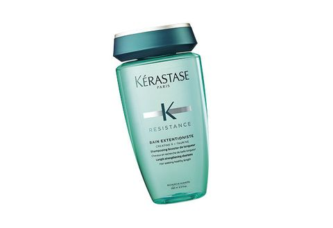 Product, Plant, Bottle, Personal care, Shampoo, Hair care, Perennial plant,