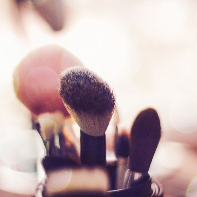 Brush, Finger, Hand, Microphone, Close-up, Photography, Macro photography, Audio equipment, Flower, Plant,