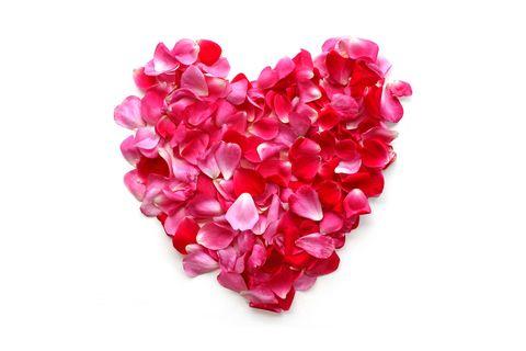 Petal, Pink, Heart, Red, Cut flowers, Flower, Magenta, Plant, Artificial flower, Valentine's day,