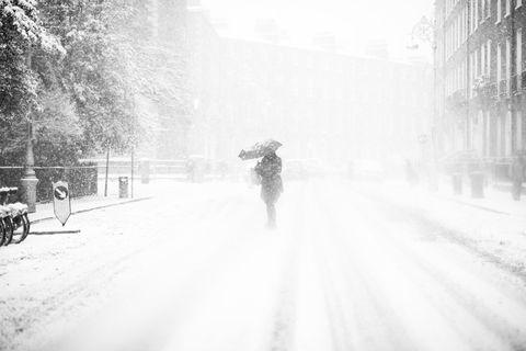 White, Photograph, Black-and-white, Monochrome, Atmospheric phenomenon, Snow, Snapshot, Monochrome photography, Blizzard, Tree,
