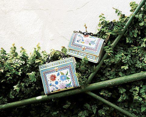 Plant, Cross-stitch, Still life, Art,