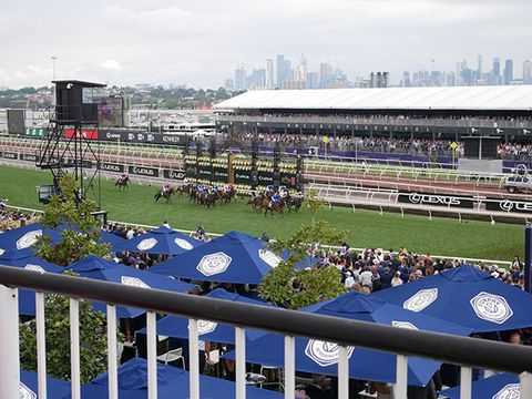 Sport venue, Crowd, Stadium, Race track, Fan, Horse racing, Sports, Horse, Animal sports, Racing,