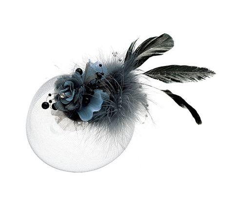 Feather, Headgear, Plant, Fashion accessory, Black-and-white, Carpenter bee, Costume accessory, Flower, Anemone,