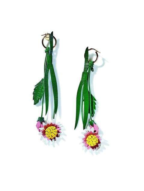 Earrings, Cut flowers, Plant, Fashion accessory, Flower, Jewellery,