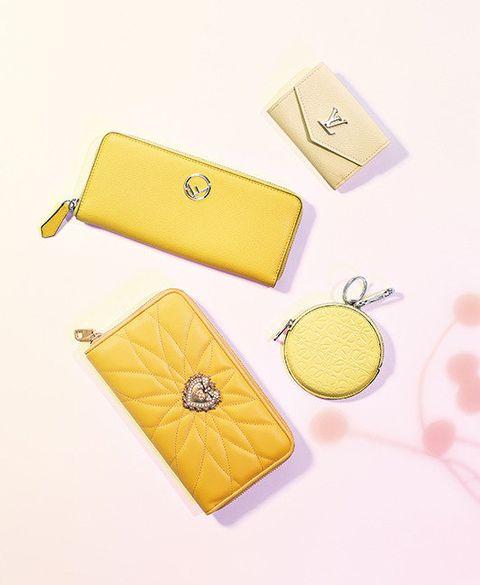 Yellow, Wallet, Coin purse, Fashion accessory, Bag, Handbag,