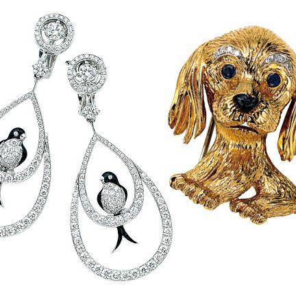 Dog, Canidae, Golden retriever, Cocker spaniel, Carnivore, Fashion accessory, Dog breed, Sporting Group, Jewellery, Spaniel,