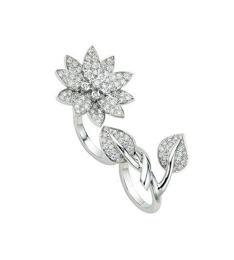 Diamond, Jewellery, Body jewelry, Fashion accessory, Platinum, Leaf, Silver, Brooch, Gemstone, Metal,