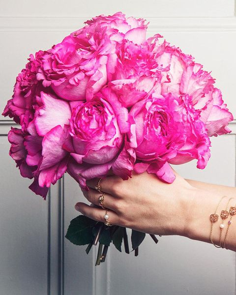 Flower, Pink, Cut flowers, Bouquet, Plant, common peony, Purple, Peony, Flowering plant, Petal,